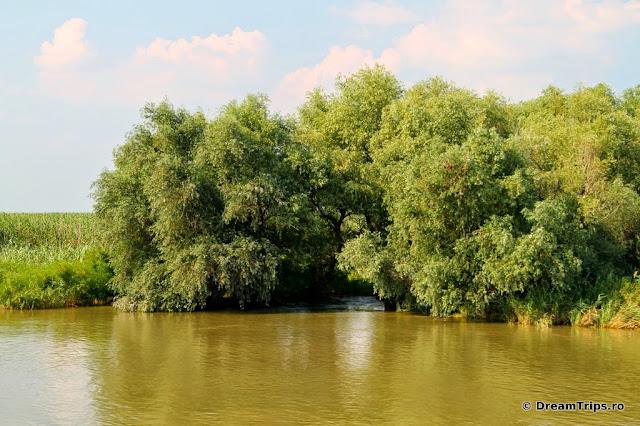 Sfântu Gheorghe Delta Dunarii 5192.JPG