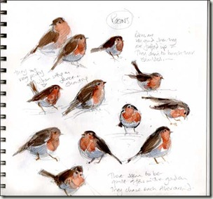 robins pagebg