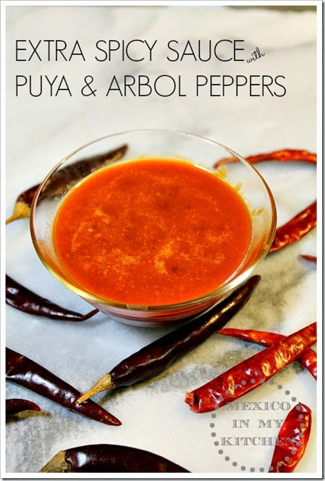 Super Spicy Salsa with Puya and Árbol Peppers | Add more flavor to your dishes with this easy spicy sauce!