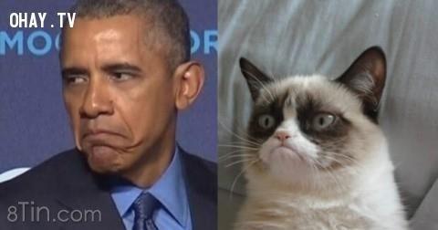 Nhiều người Mỹ đã xem xét Obama như là Tổng thống tồi