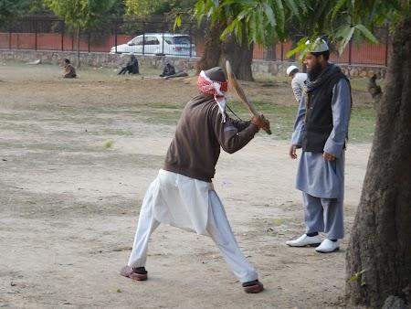 28. Cricket Delhi.JPG