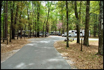 00 -  Suwannee River State Park Campground