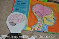 Internal Organs of the Human Body
