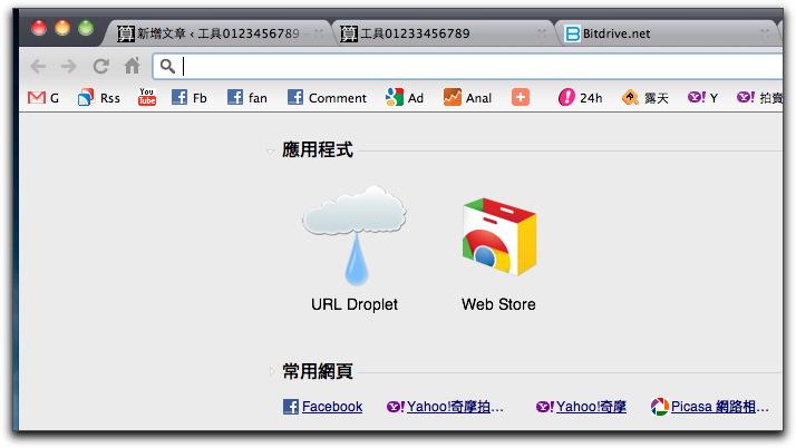 Google Chrome201105009.jpg