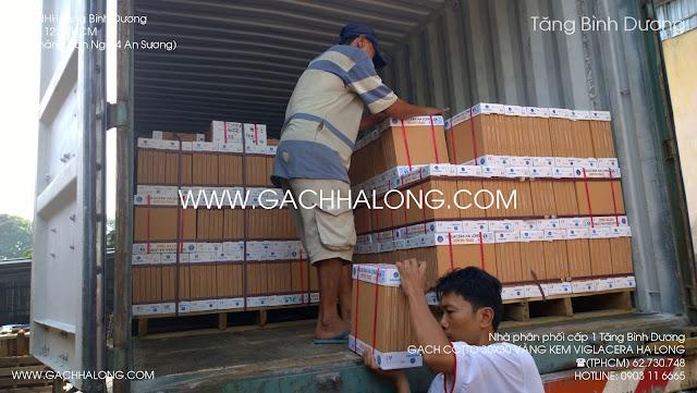Gạch kem Viglacera Hạ Long 30x30 cm