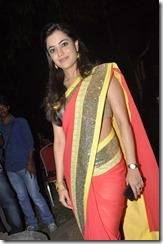nisha_agarwal_beautiful_in_saree_photo