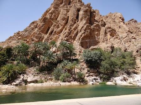 02. Lac in desert in Oman.JPG