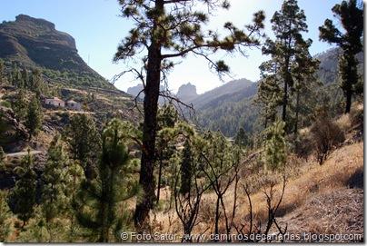 6209 Montaña Alsandara