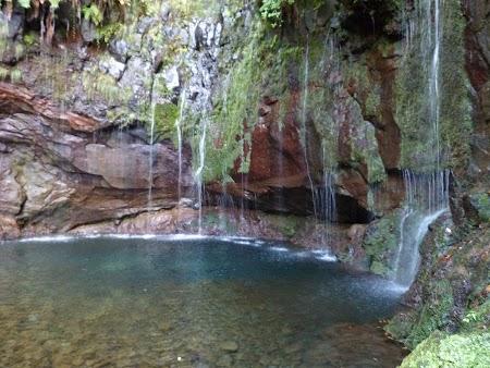 12. Cascade din Madeira, Portugalia.JPG