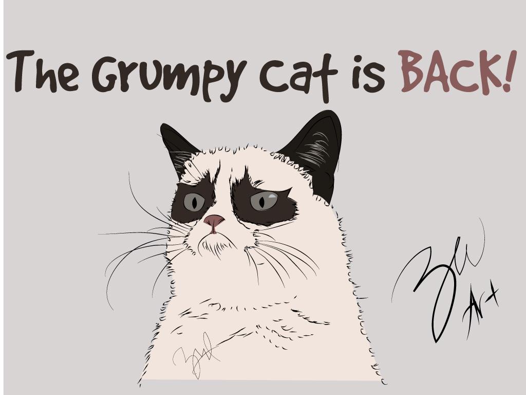 The Grumpy Cat Jasa Foto Kartun Edit Foto Jadi Kartun