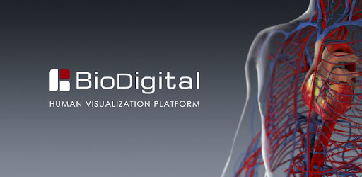 BioDigital Human - 3D Anatomy – Apps bei Google Play