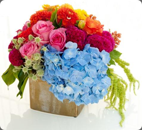 39902_461652925420_295546405420_6792757_1836258_n bloom by Anuschka