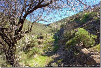 7548 El Aserrador-Vega Acusa(La Solaneta)