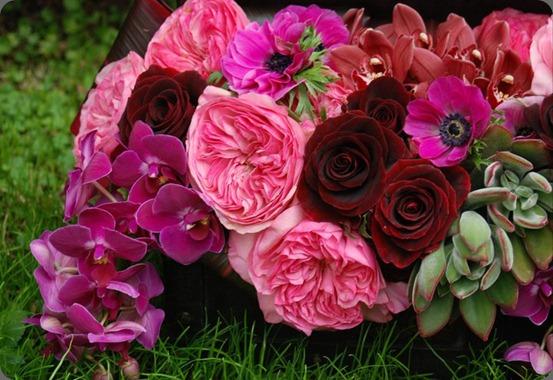 156657_180782318614356_159860124039909_618345_7609928_n  seed floral