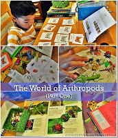The World of Arthropods for Kids (Part One)