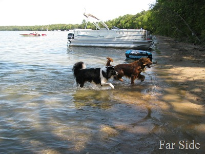 Chance and Riley at Cass Lake sept 11