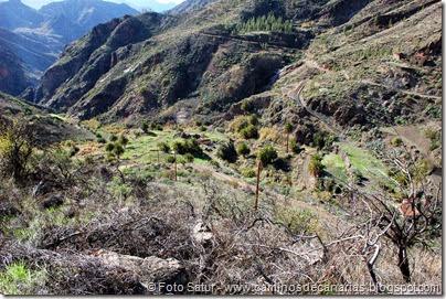 7058 Cruz Tejeda-Artenara-Guardaya(Guardaya de Abajo)