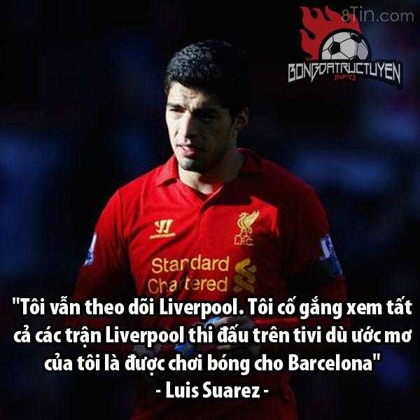 Fan Liverpool còn giận anh nữa ko?