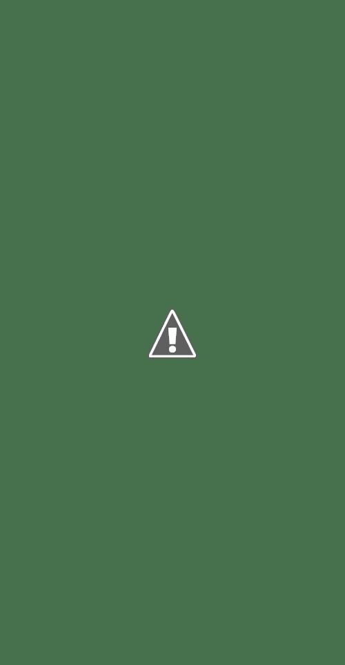 Colección completa de iconos en vectores dibujados a mano sobre comida, cocina y alimentos.