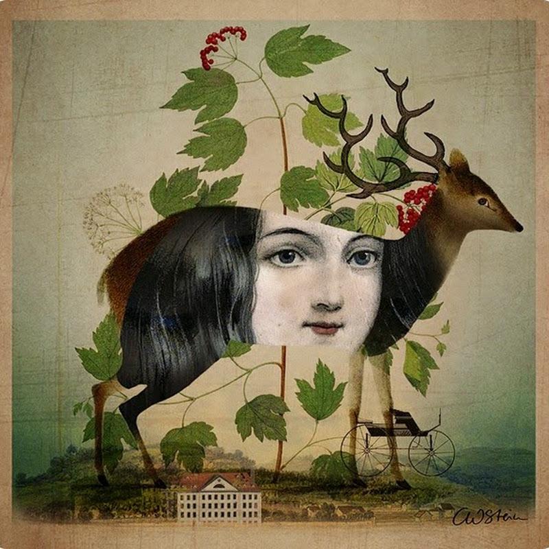 Le illustrazioni digitali di Catrin Welz-Stein.