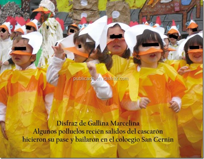gallina marcelina 1
