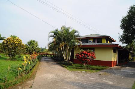 Imagini Costa Rica: Jardines Arenal La Fortuna