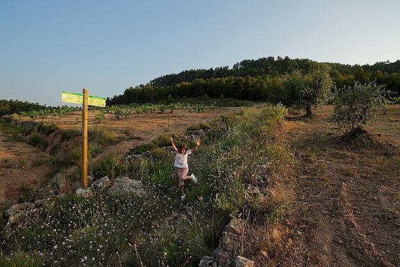 Celler Mas d'en Gil, antiga masia Barril.DOQ Priorat.Bellmunt del Priorat, Priorat, Tarragona