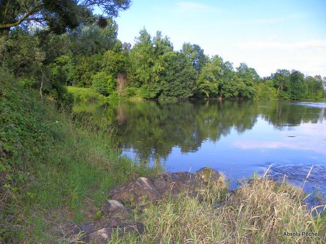 Loire au camping de Balbigny photo #869
