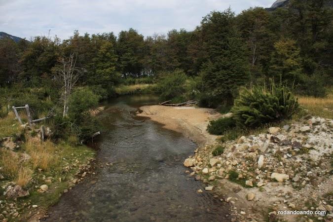 Los árboles evitan y disminuyen la erosión del suelo y la contaminación de los recursos hídricos.
