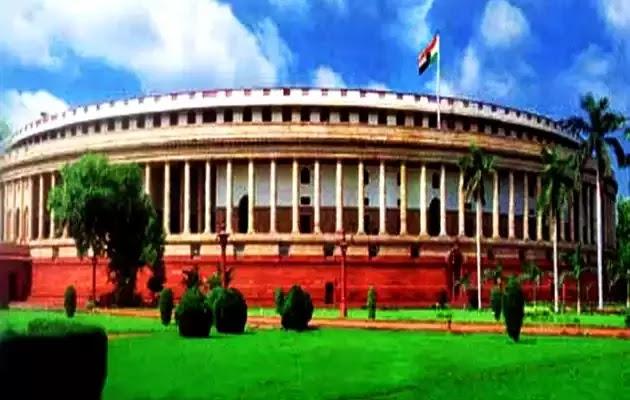 संसद में व्हिप क्या होता है ?