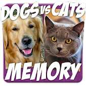 Dogs Vs Cats Action Memory
