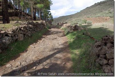 7030 Cruz Tejeda-Artenara-Guardaya(Camino de Artenara)