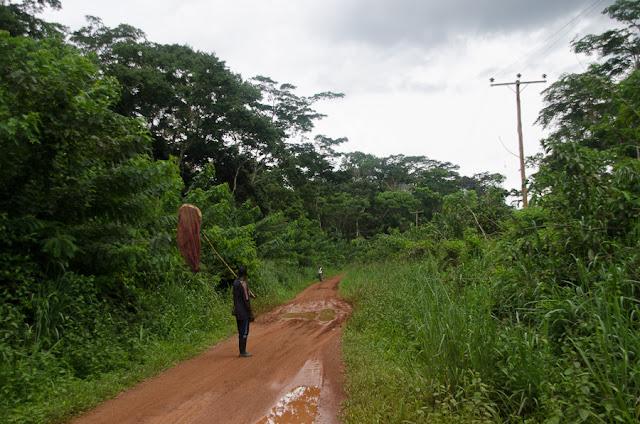 Sur la piste menant à Ebogo (Cameroun), 21 avril 2013. Photo : C. Basset