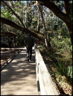 Manatee and Black Bear Trail 026