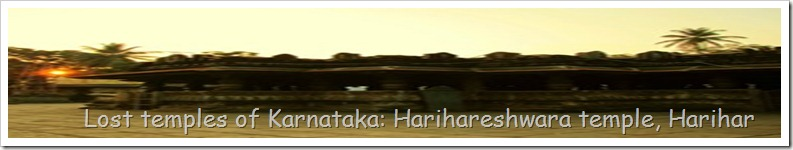 Lost temples of Karnataka: Harihareshwara temple, Harihar
