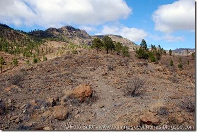 6940 Chira-Cruz Grande(Montaña Cercados)