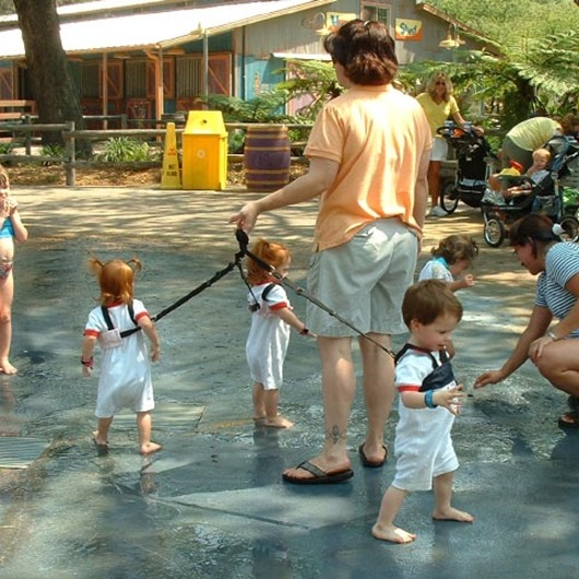 Babies-on-Leashes