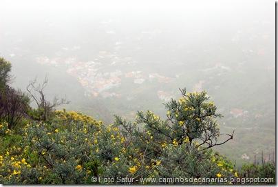 5357 La Pasadera-Roque Carnero