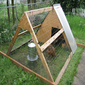 How To Build A Chicken Coop logo