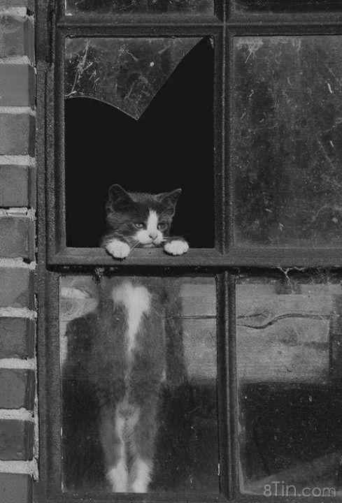 Khoảnh khắc bình yên nhất, cũng có thể là cô đơn nhất,