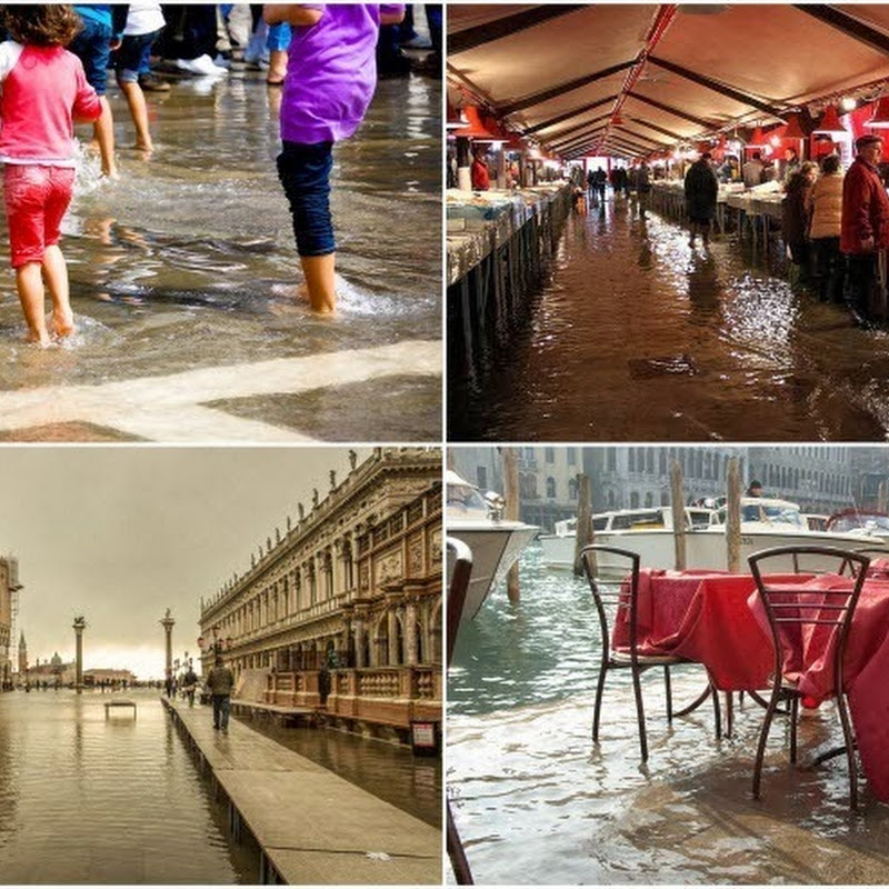 Acqua Alta: The Periodic Flooding of Venice and Chioggia