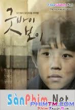 Chuyện Của Jin Woo