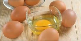 Menaklukkan Telur, Lidah Buaya, Madu dan Havermut