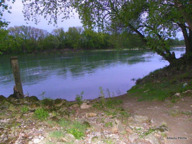 Vieux Rhône à Irigny en  aval réserve de Pierre-Bénite photo #993