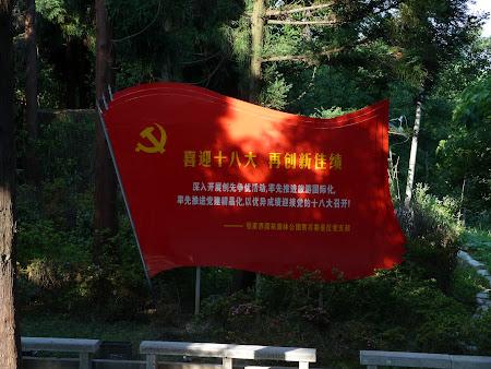 Partidul Comunist Chinez