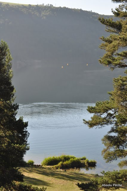 Lac d'Issarlès photo #478