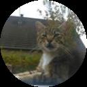Image Google de Titou111 az