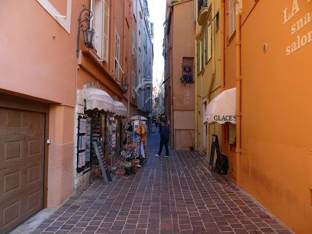 20. Vechiul Monaco.JPG