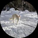 Image Google de Jennifer Grimault