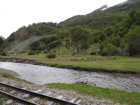 Tara de Foc: Pe drumul trenului